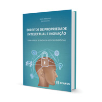 Direitos de propriedade intelectual e inovação | Uma análise econômica além das evidências<br /> (e-book)